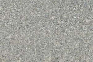 Bargiolina серый